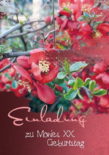 Ansicht 3 - Geburtstagskarten Blüten