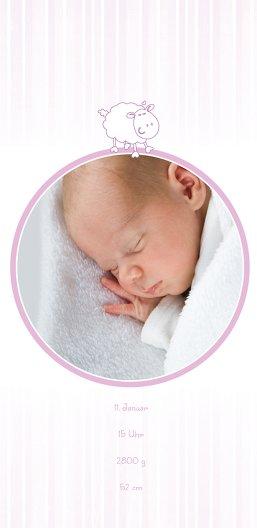 Ansicht 4 - Baby Dankeskarte sheep