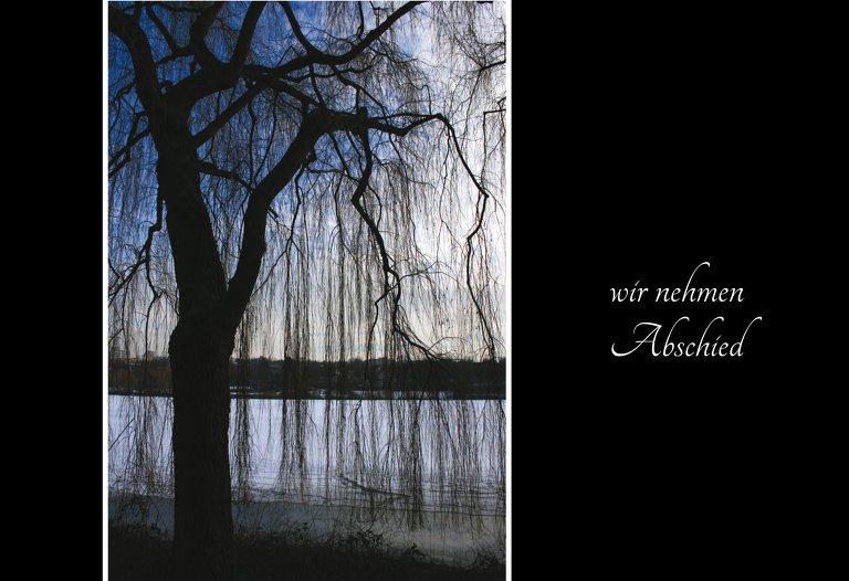Ansicht 3 - Trauerkarte Baum quer