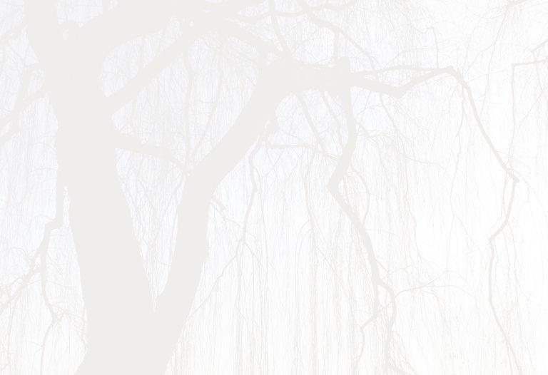 Ansicht 4 - Trauerkarte Baum quer