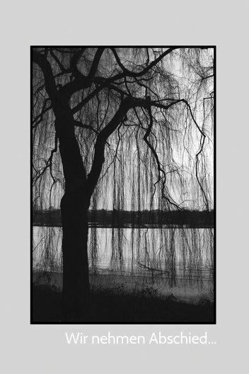 Ansicht 3 - Trauerkarte Baum
