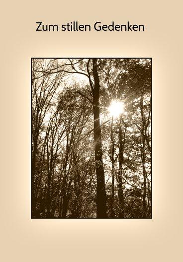 Ansicht 3 - Sterbebildkarte Wald