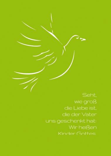 Ansicht 2 - Konfirmation Einladung Pigeon