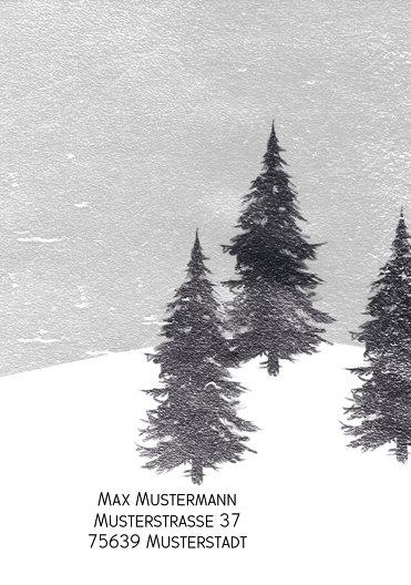 Ansicht 2 - Foto Grußkarte Winterwald