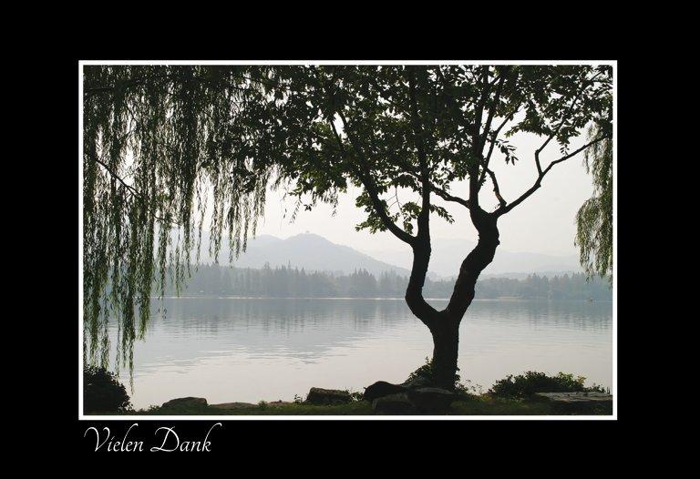 Ansicht 3 - Dankeskarte Baum am See quer