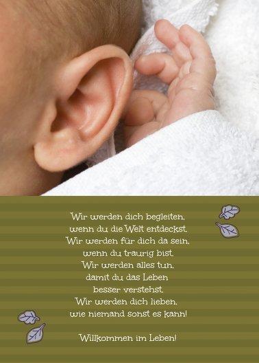 Ansicht 3 - Babykarte Grid