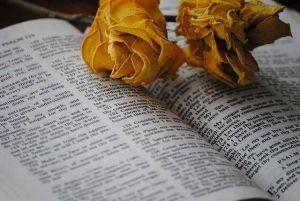Bibel als Vorlage für das Vesprechen