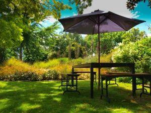 Sommerparty im eigenen Garten